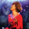 SIMPLY THE BEST - Die Tina Turner Story • 05.01.2020, 19:00 • Braunschweig